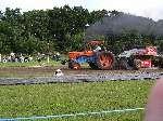NM 2005